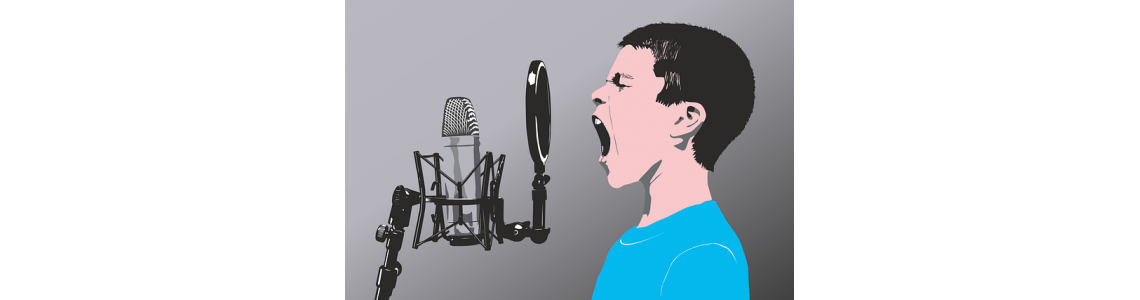 Microphones and Voice